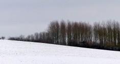 A simple landscape