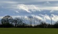 January skyline