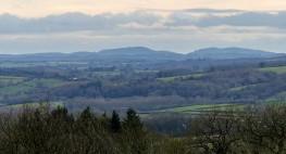 A southern skyline