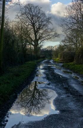 No shortage of puddles