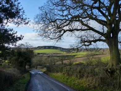 Dean Farm lane