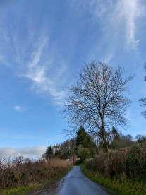 Towards Linley Brook