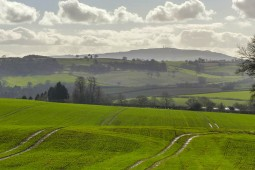 Brown Clee beyond the fields