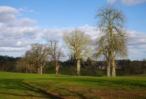 Hurst Farm avenue