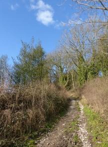 Round Hill lane
