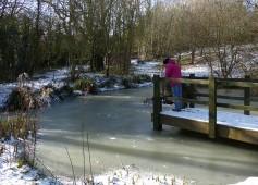 Haycop pond