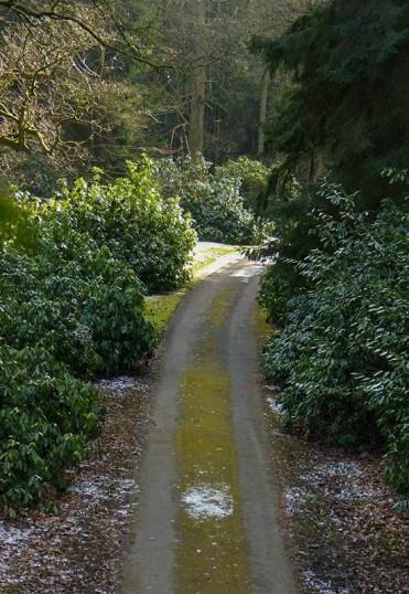 The estate road