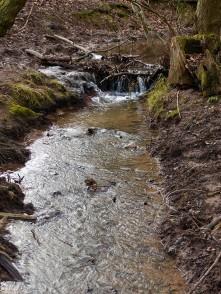 Bould Lane brook