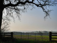 Misty view to Wenlock Edge