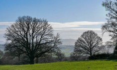 The view to Brown Clee