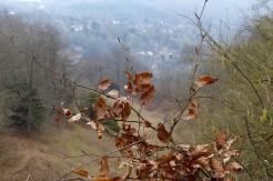 The Ironbridge viewpoint