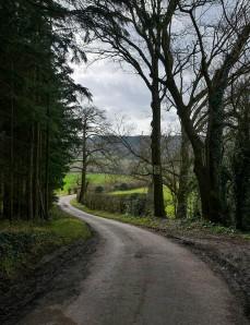 Down Scots Lane