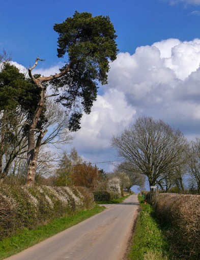 Baucott Lane