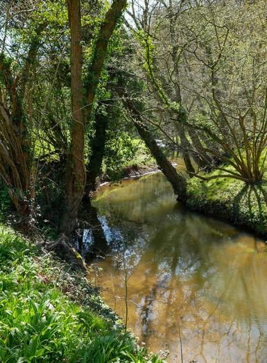 Sheinton Brook