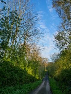 Down Bould Lane