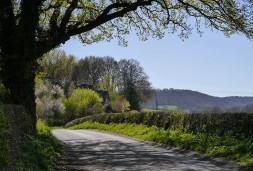 Sheinton Road