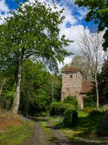 Church amongst the trees