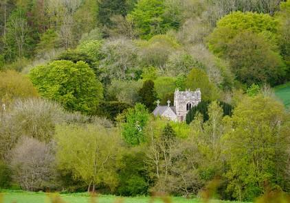 Eaton: a tower amongst the trees