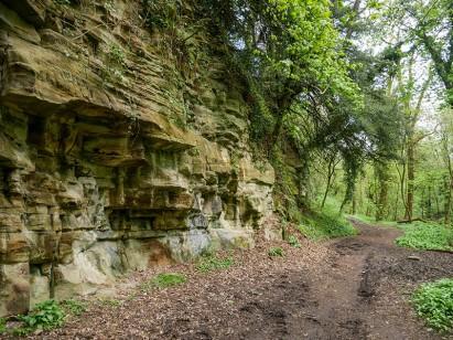 A hidden rocky gorge