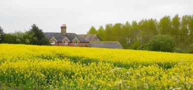 Caughley Farm
