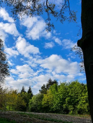 Lighter clouds