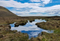 A pool on the moor ...