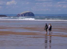 Beach strollers