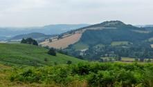 Burrow hill