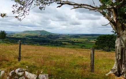 View to Corndon Hill
