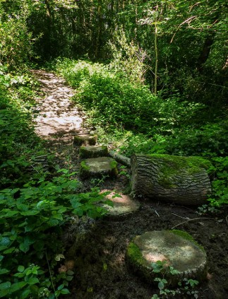 Stepping stones (or logs)