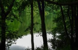 Raindrops in the lake