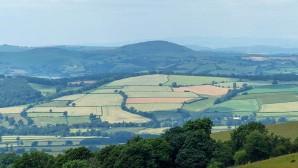 Wenlock Edge - fields beyond Broadstone