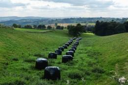 Beautifully arranged bales