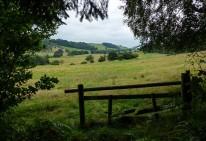 The hidden valley of Bullhill Brook