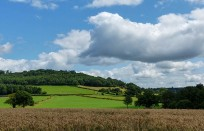 Lower slopes of Brown Clee