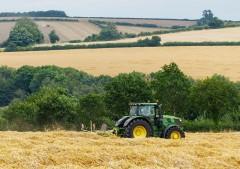 Work in the fields