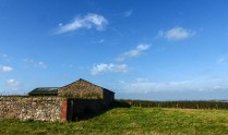 Farm buildings on the ridge