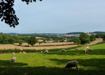 Edge country near Stokes' Barn