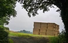 Tower block of straw