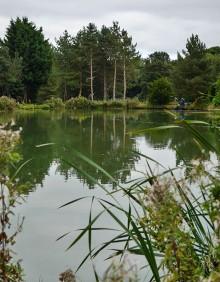 Fishing pools