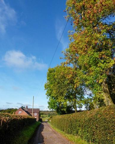 Autumn at Bourton Westwood