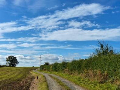 An autumn sky...