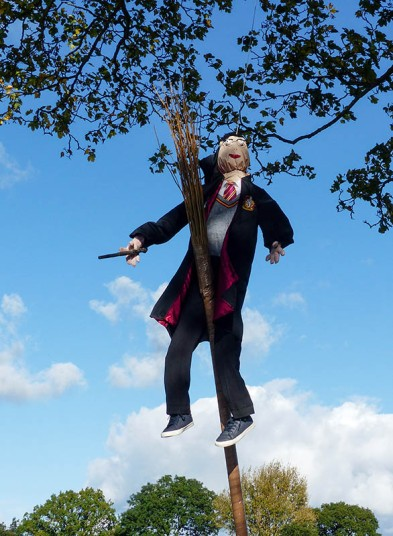 Look - it's Harry Potter