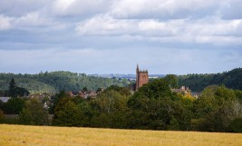 St Leonard's tower - a distant view