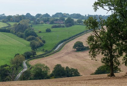 The road to Ditton Priors