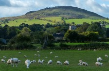 Caer Caradoc and Cardington (and sheep)